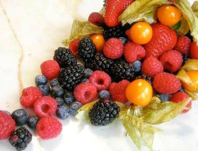 Отправляемся за ягодами. в магазин Статьи Блог ArbOOz!