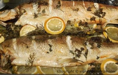 White Fish Recipes on Main Ingredients Whitefish 2 Each About 2 3 Lb Scaled